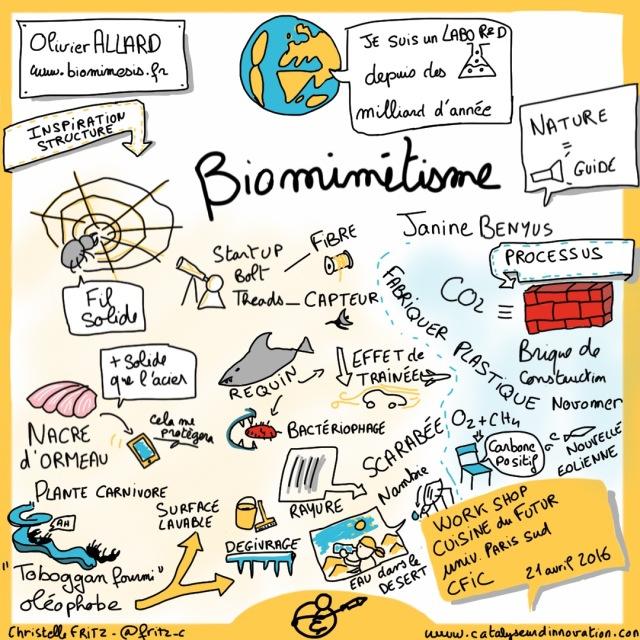 20160421 CFIR Biomimetisme